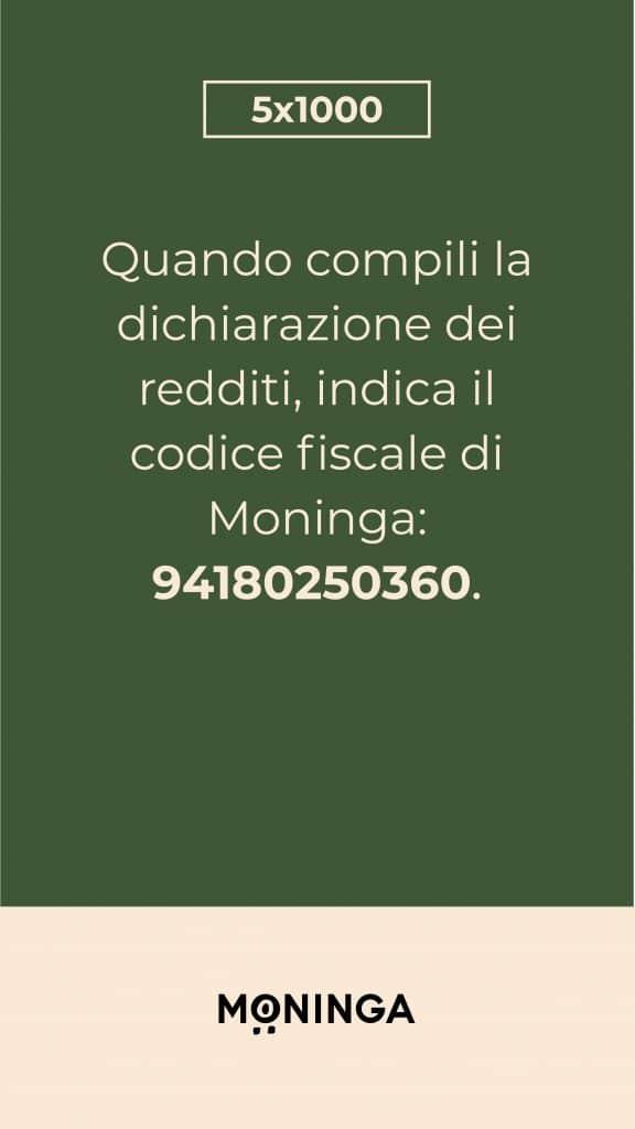 5x1000_igSt_4