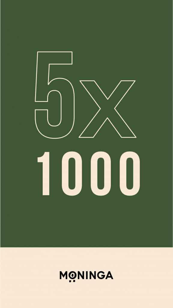 5x1000_igSt_7